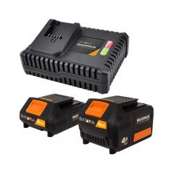 Lot Batterie + Chargeur...